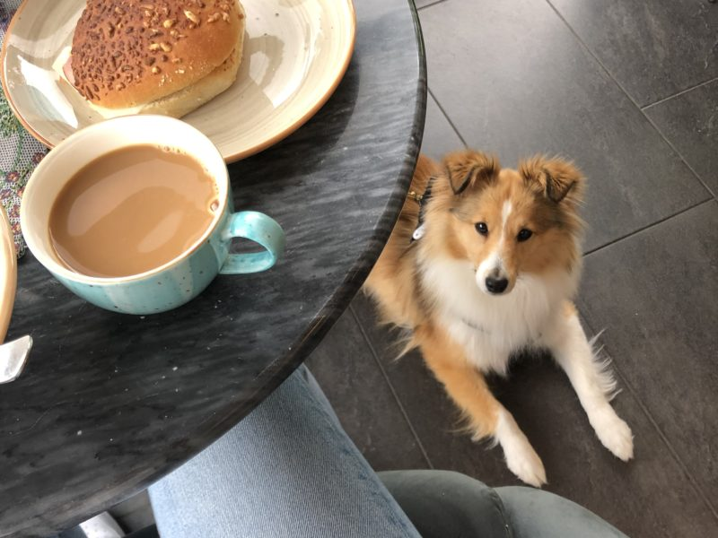 Löfgrens Bröd & Fika