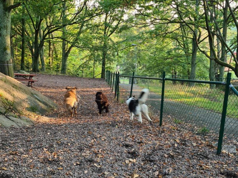 Keillers Park Hundrastgård