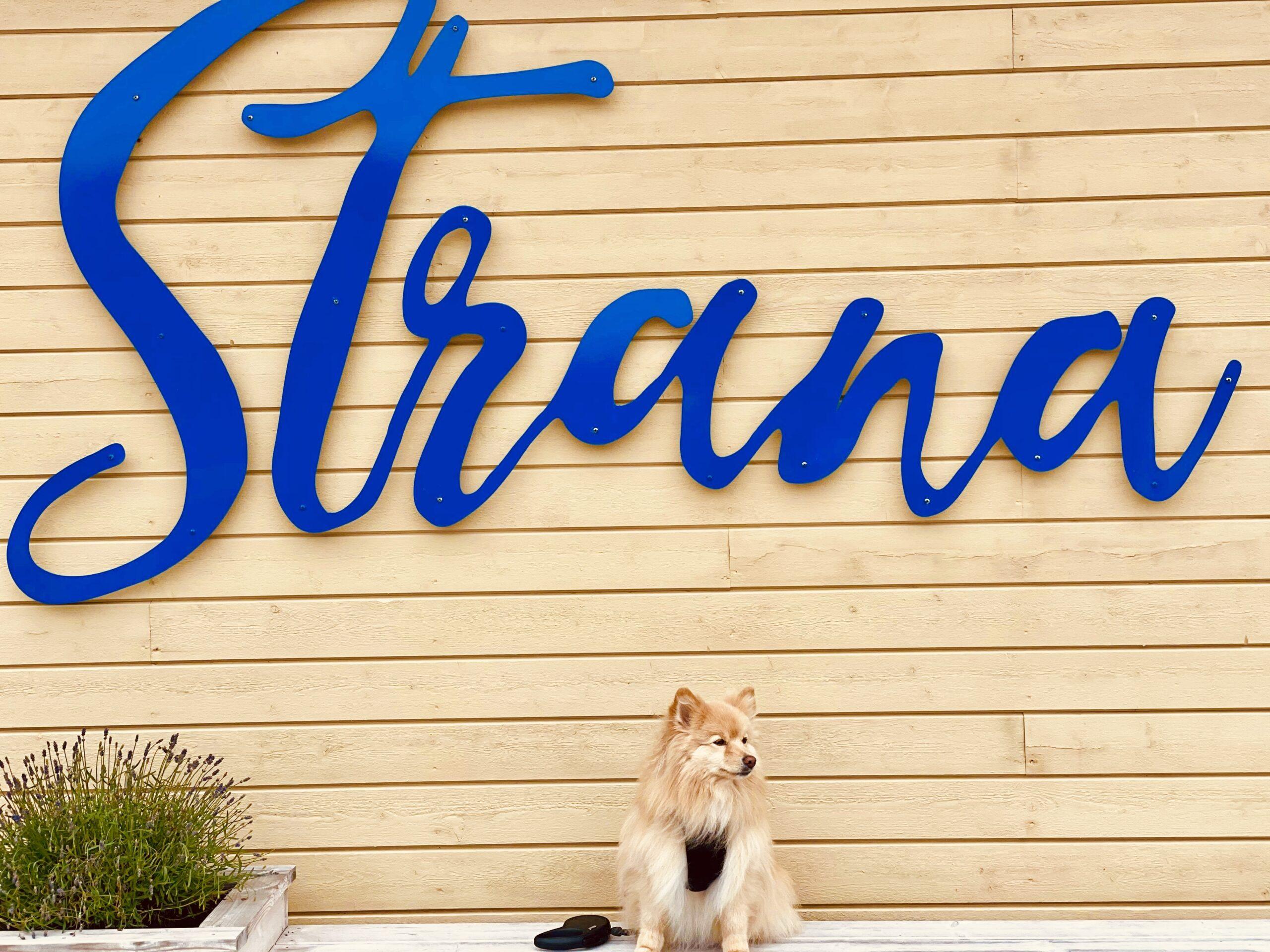 Hotel Strana